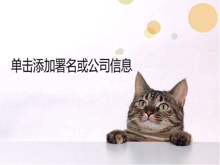 可爱小猫ppt模板模板免费下载