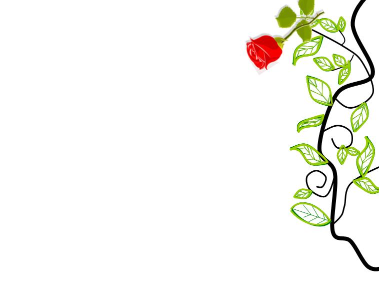 纹饰 时尚 边框 花边 边角 玫瑰 ppt 模板 花纹 边框
