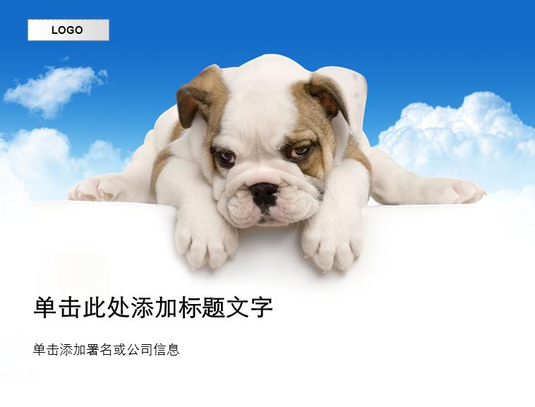 可爱的小狗宠物精美ppt模板免费下载