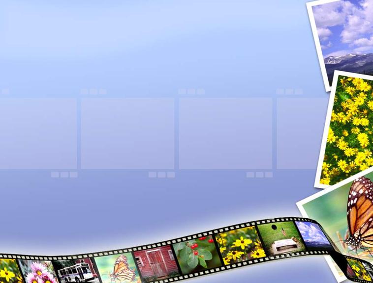 花卉风景胶卷ppt模板