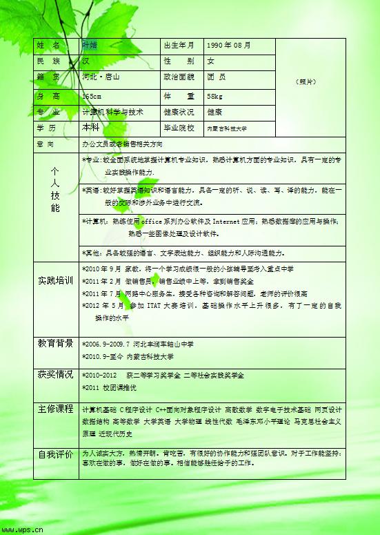 101号作品:叶婧个人简历模板免费下载_19355- wps在线图片
