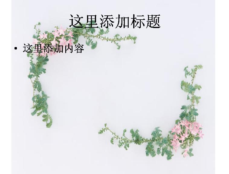 花卉植物花边图片模板免费下载