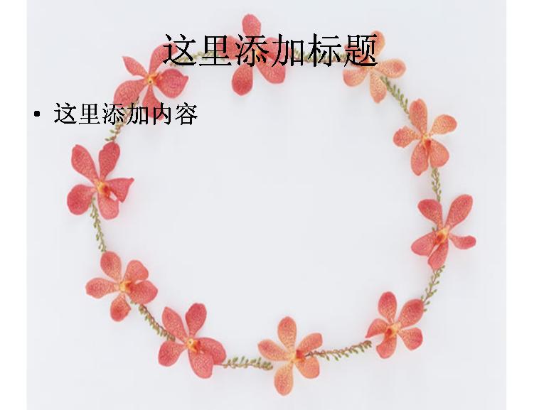 国庆花朵简笔画