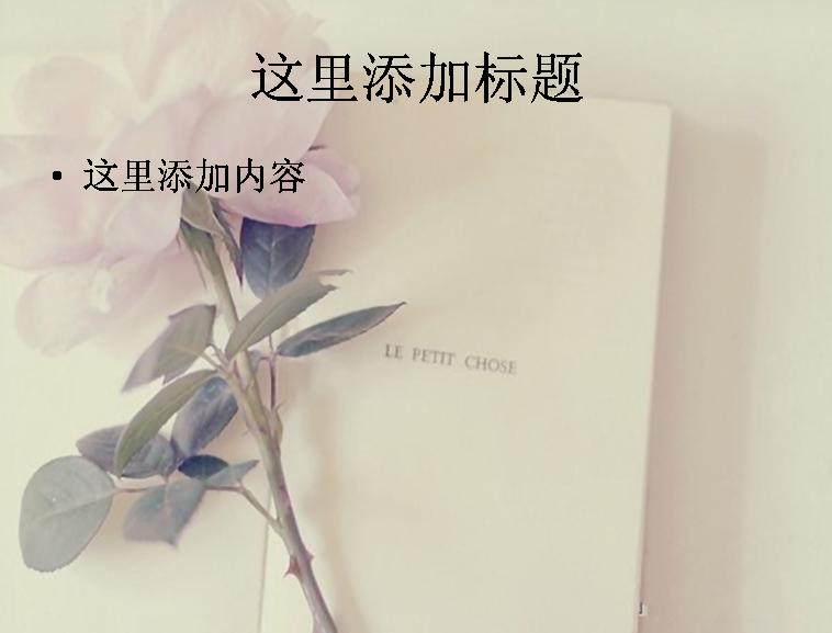值得一赏的书中花朵唯美意境(10)模板免费下载图片