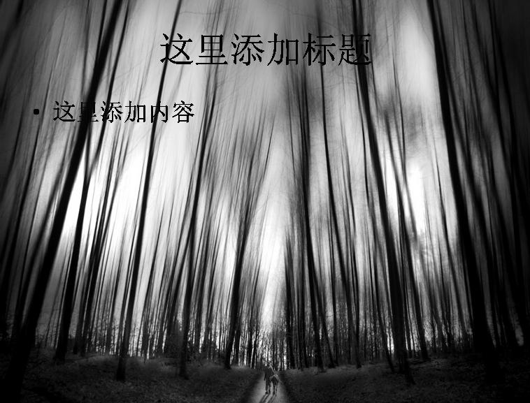 印象主义黑白风光ppt背景摄影(11)