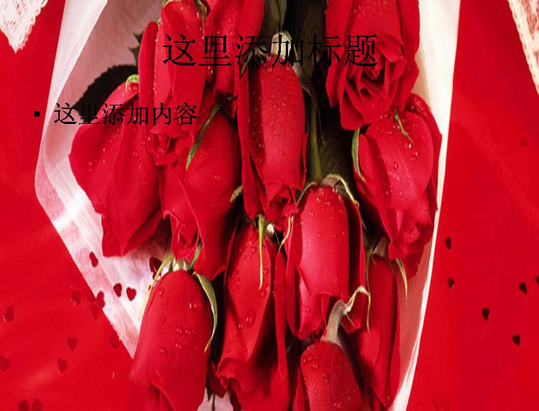 红玫瑰背景图片模板免费下载_90914- wps在线模板