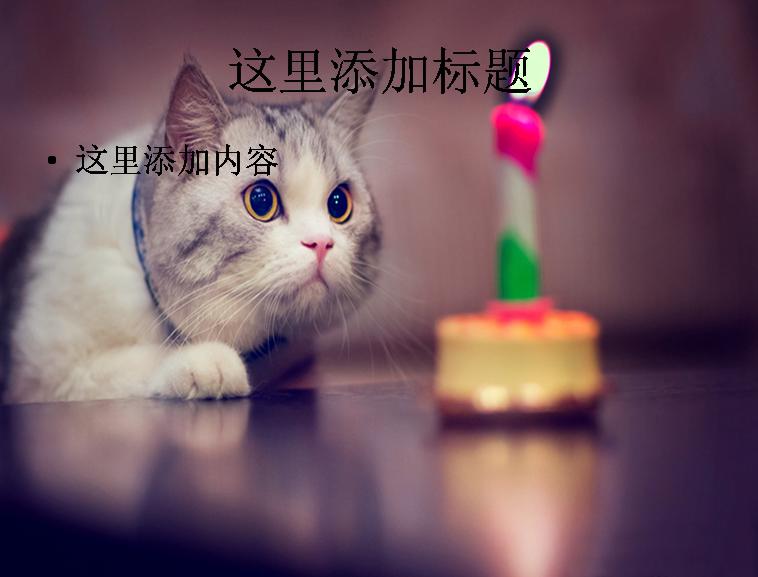 可爱猫咪(2)模板免费下载_91398- wps在线模板