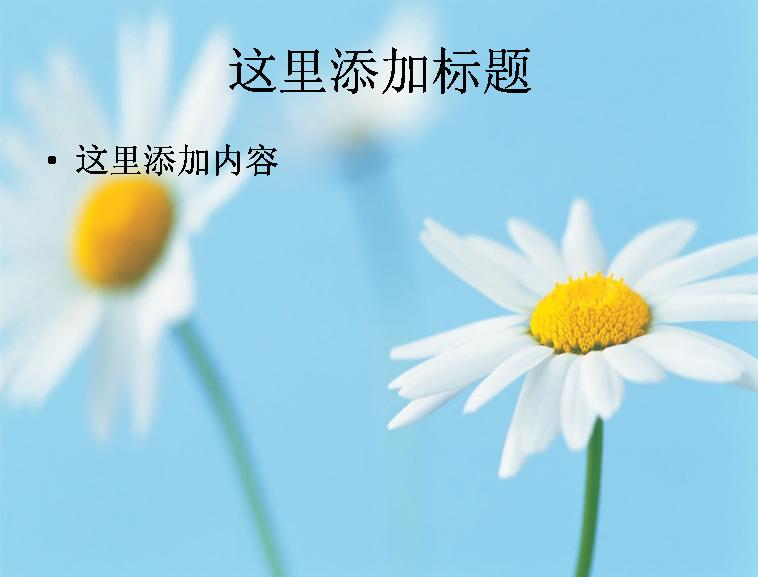 护眼小清新鲜花(5)