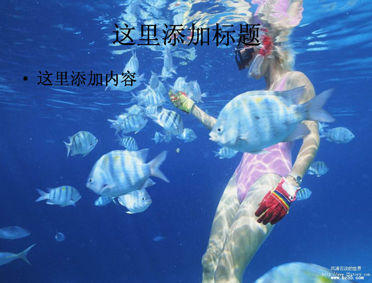 海底世界(5)