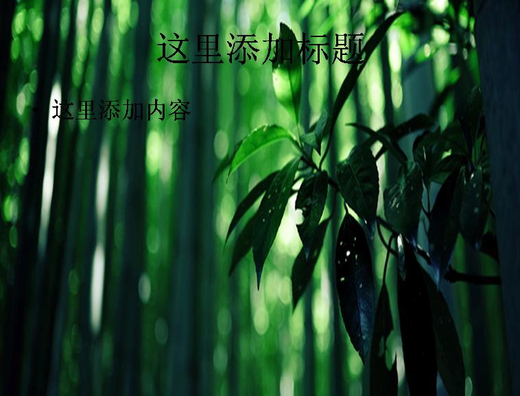 绿色竹子模板免费下载