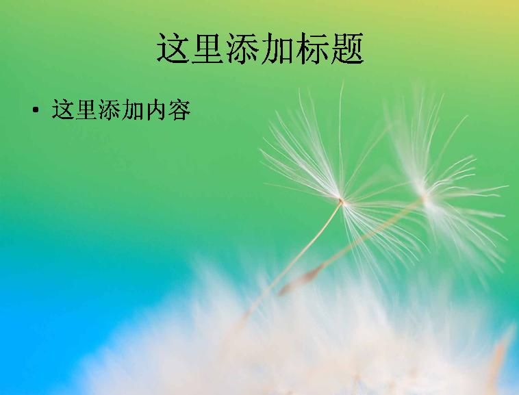 蒲公英專題風景ppt高清圖片(5)