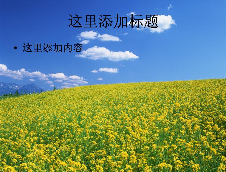 那些花儿背景图片ppt(5)模板免费下载_94163- wps在线