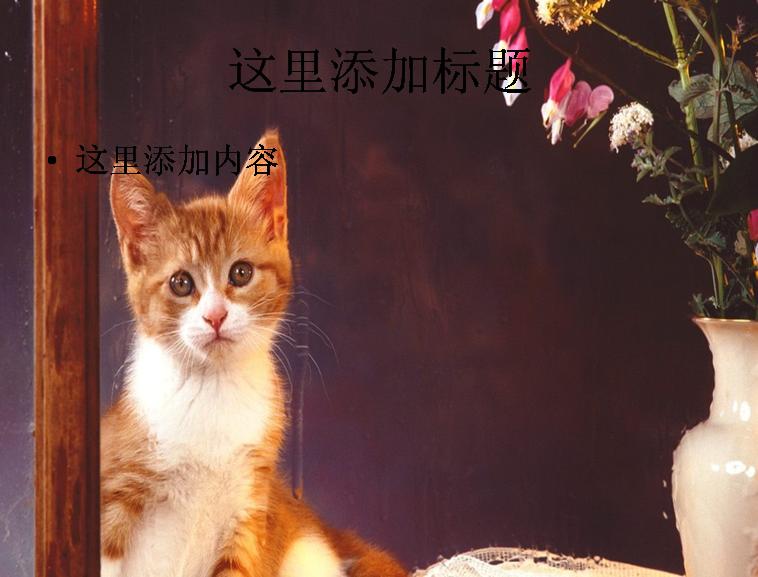 可爱小黄猫ppt(3_11)模板免费下载