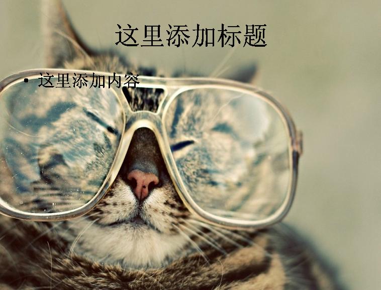 萌猫ppt(5_10)模板免费下载