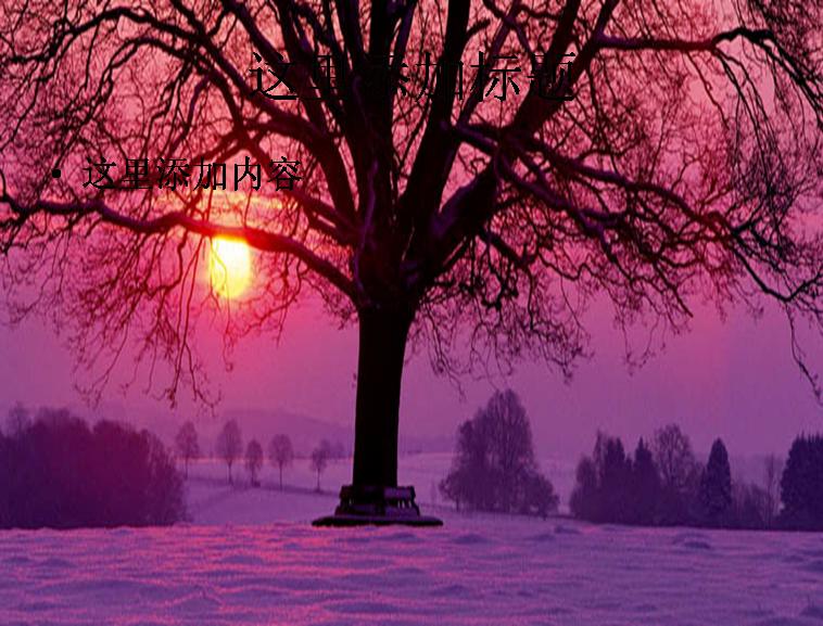 冬天优美风景ppt封面模板免费下载
