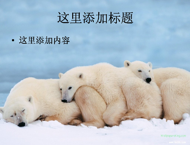 演讲稿模板下载_新浪博客