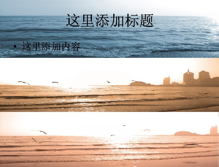 高清大海浪花海鸥壁纸