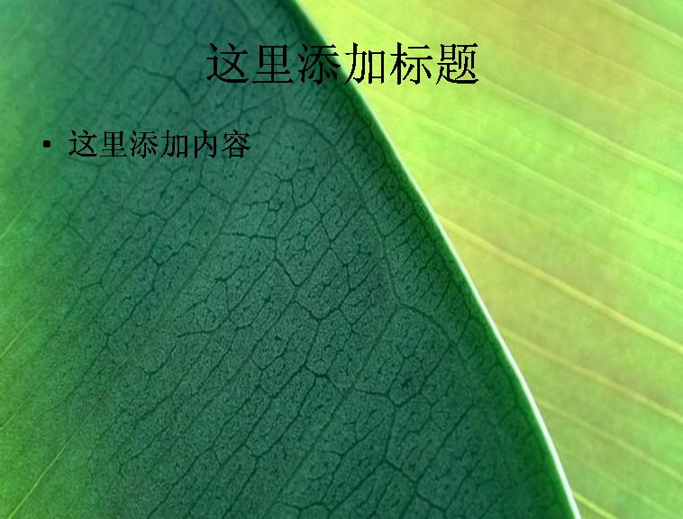 大自然风景绿色养眼高清ppt封面(12)模板免费下载_17
