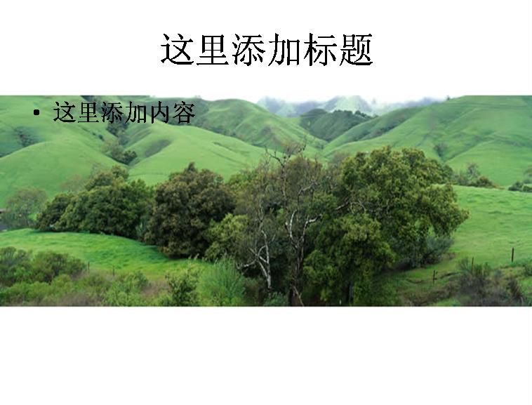 山坡绿草树木模板