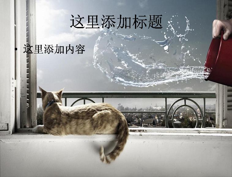 搞笑动物风景图片电脑高清ppt封面(7)模板免费下载
