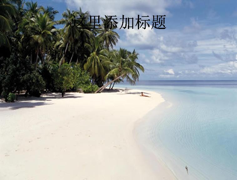 海滩风景夏威夷椰树模板