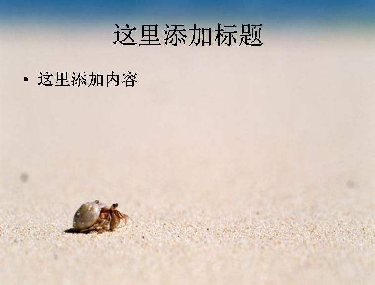 海边写真-3-6风景-ppt模板范文模板免费下载