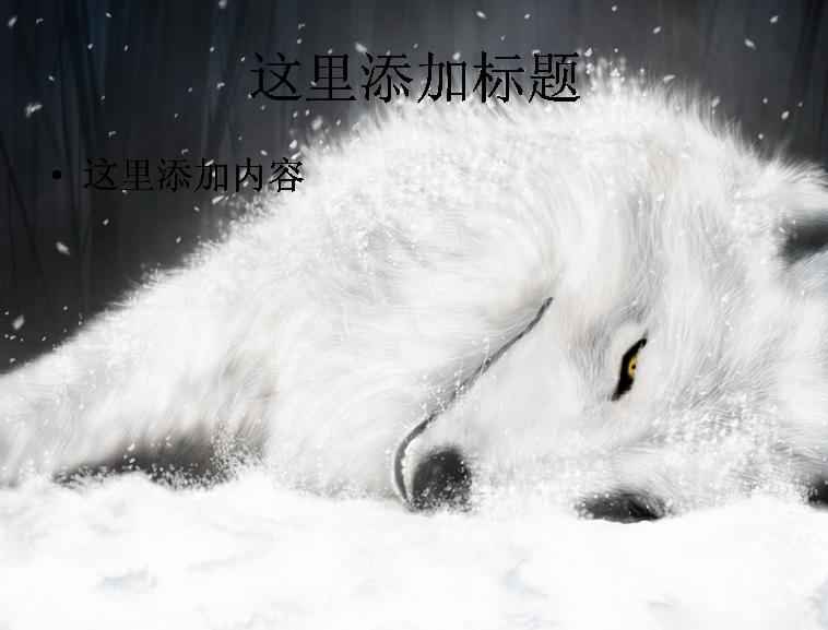 电脑ppt封面超可爱动物背景图片(3)模板免费下载