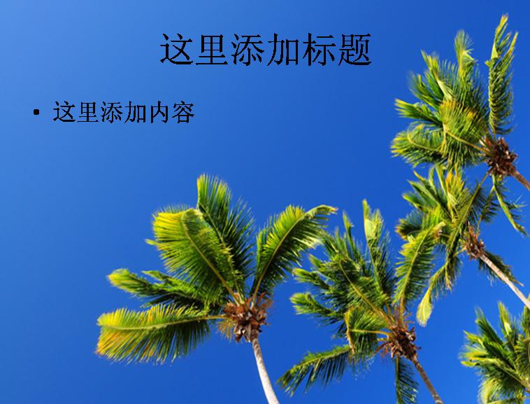 蓝天和椰子树高清ppt模板范文风景ppt模板范文