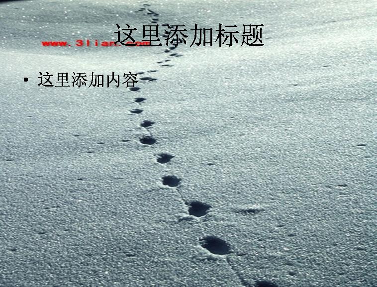 雪地里的脚印模板图片