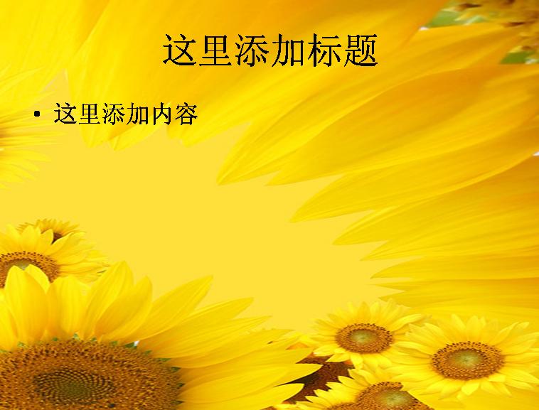 向日葵背景图片ppt素材-13花卉图片ppt