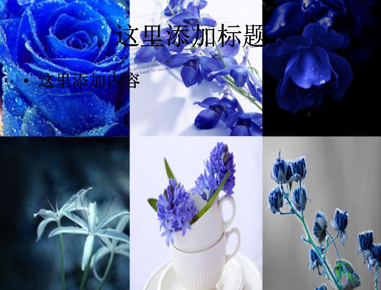 标  签: 植物花朵树林 支持格式: ppt wpp            146kb 作  者
