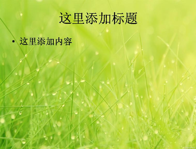 小清新意花卉超大(二)(11_14) 支持格式:ppt wpp 文件大小: