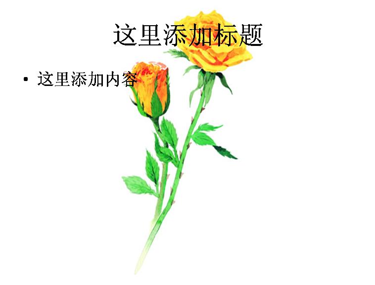 一杯玫瑰花茶和一支玫瑰花图片