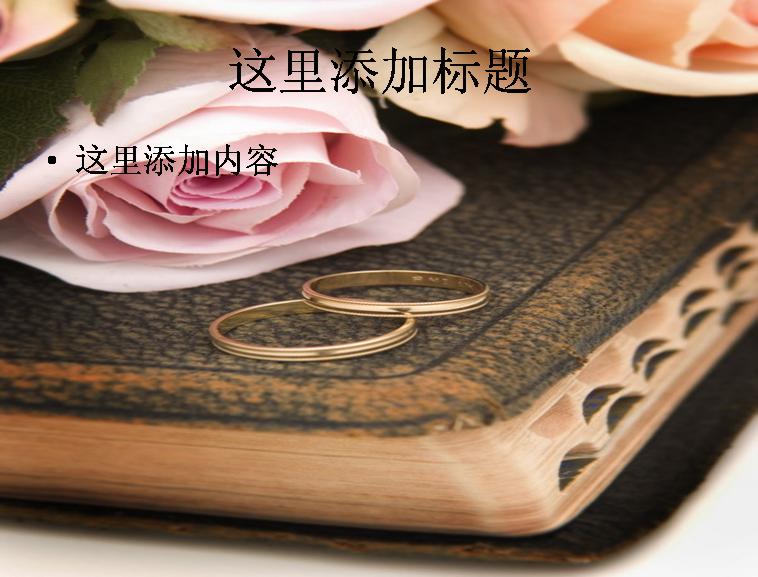 玫瑰与圣经高清图片ppt花卉图片ppt模板