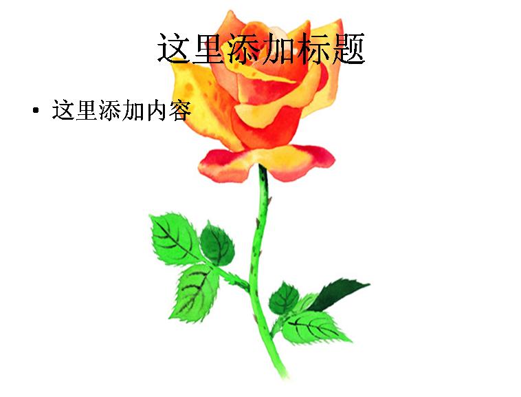 玫瑰水彩画图片ppt模板 604ll