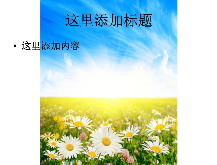 甘菊;;  晚霞 甘菊 花海图片素材,蓝天,白云,花朵,鲜花摄影素材,植物