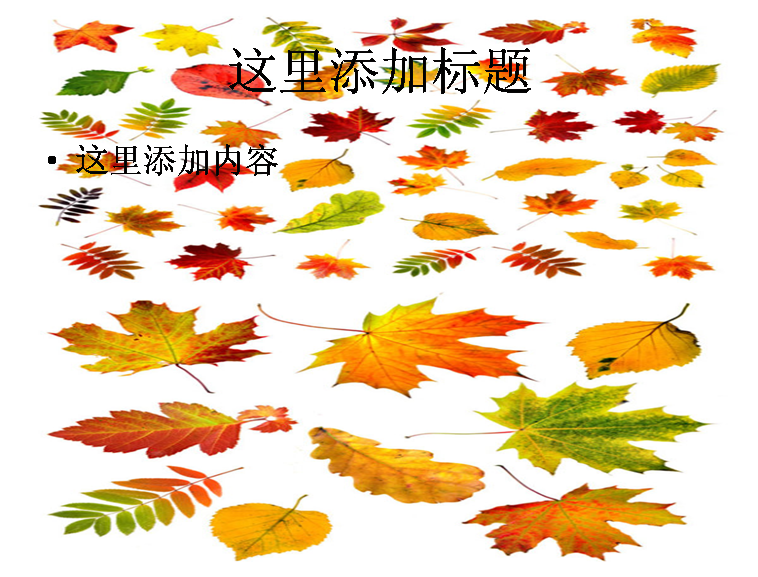 版权:此模版来源于网上搜集或网友上传,版权归模板作者所有,仅供学习参考使用 【稻壳儿】WPS在线模板中心 - 提供最新秋天的树叶图片ppt模板资源免费下载,适合制作与设计专业的秋天的树叶图片ppt文档!