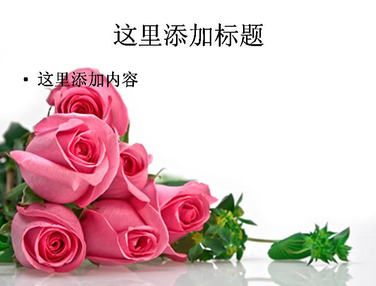 粉红色玫瑰花花束图片ppt素材花卉图片ppt模板-587ll