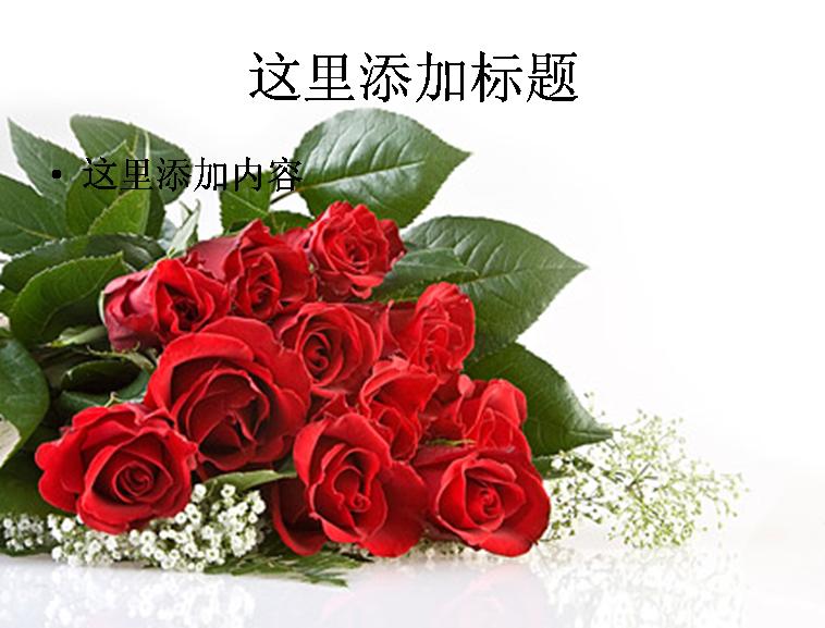 红色玫瑰花花束图片ppt素材花卉图片ppt