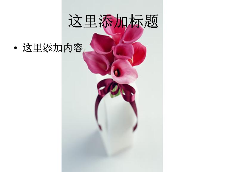 红色马蹄莲插花图片ppt模板免费下载_115527- wps在线