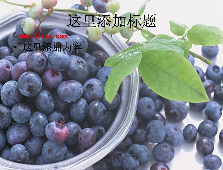 蓝莓果树图片ppt模板免费下载_116015- wps在线模板