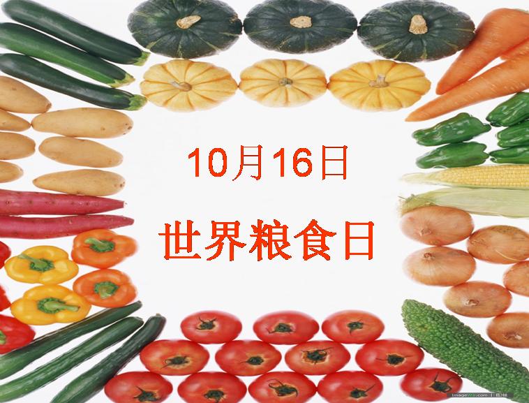 世界粮食日图片